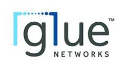 Glue Networks Stock