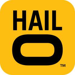 Invest in Hailo