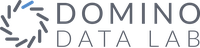 Domino Data Lab Stock
