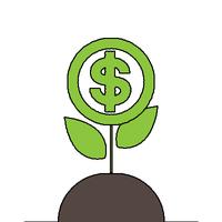 Seed Fund Raise Stock