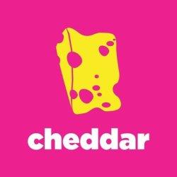 cheddar Stock