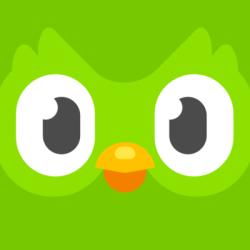Duolingo Stock