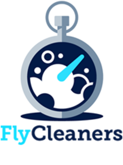 Invest in FlyCleaners