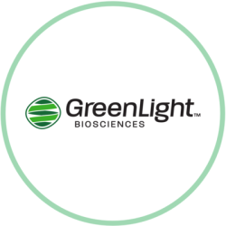 Greenlight Biosciences Stock