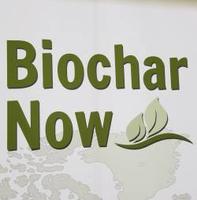 Biochar Now Logo