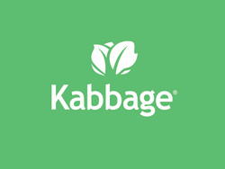 Invest in Kabbage