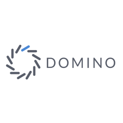 Domino Data Lab Logo
