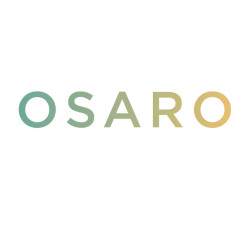 Invest in Osaro