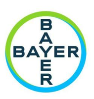 Bayer Stock