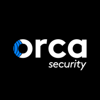 Orca Security Stock