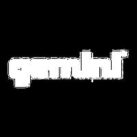 Invest in Gemini