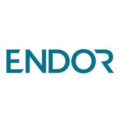 Invest in Endor