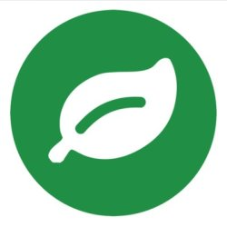 Rainforest QA Logo
