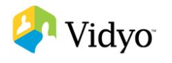 Invest in Vidyo