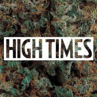 High Times Stock